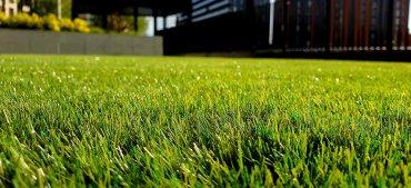 Robot Lawn Mower Image